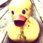 duckwrath