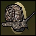 MolluskProductions