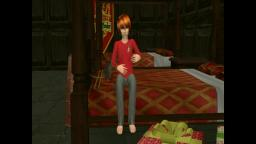 Harry Potter and the Philosophers Stone Chapter Twelve - Sims 2.