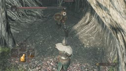 Dark Souls 2 - Forest of Fallen Giants Modded Enemy Placement