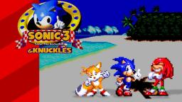 Sonic The Hedgehog 3 & Knuckles -Bloxed
