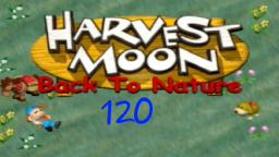 Let´s Play Harvest Moon Back To Nature ★ 120 ★ Immer diese Störungen