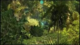MY FAIR USE CREATIVITY OF MY RAIN FOREST -  Paul Hardcastle - Rainforest[via torchbrowser.com]