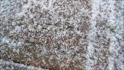 February 11th 2018 Texas Sleet