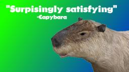 Capybara Feels Blessed