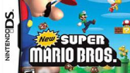 Time Running Out: New Super Mario Bros. DS