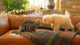 Nintendo 3DS Trailer - Nintendogs + Cats