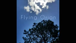 Flying Orion - Frost Forest Village