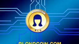 Acceder-a-billetera-Ethereum-Blondcoin-con-clave-privada