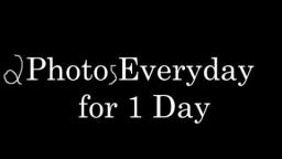 Quentin Takes 2 Photos Every Day for 1 Day