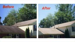 All U Need Roof Cleaning in PG County, MD