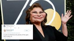 Roseanne gets her own show cancelled