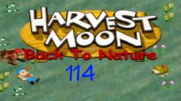 Let´s Play Harvest Moon Back To Nature ★ 114 ★ Größeres Haus