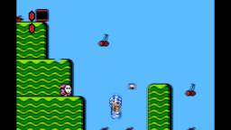 Super Mario Bros. 2: Fast Shy Guy