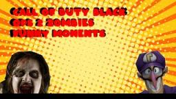 Funny Moment-Call Of Duty black ops 2 zombie(big farm guy,Waluigi,missing up)