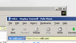 ie theme for pale moon!
