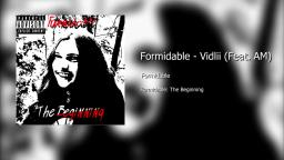 Formidable - Vidlii (Feat. AM)