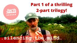Silencing the mind - part 1