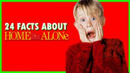 24 Facts About Home Alone - Vulture X