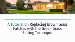 A Tutorial on Replacing Brown Grass Patches with the Green Grass Editing Technique