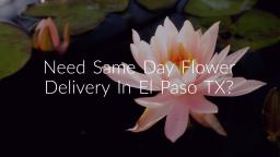Same Day Flower Delivery In El Paso TX | (915) 229-5477