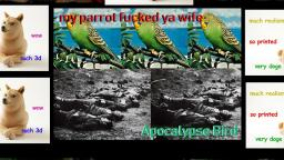 MY PARROT FUCKED YA WIFE - APOCALYPSE BIRD