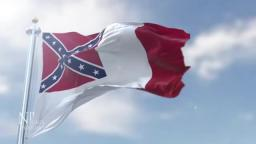 The  national flag of the Confederate States of America[⏎1863–1865]