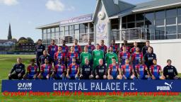 Crystal Palace 2018/19 season shit post compilation