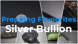 Prepping Favourites - Silver Bullion